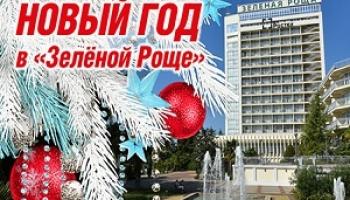 Новый год в «ЗЕЛЁНОЙ РОЩЕ»